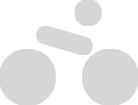 logo fiets TDS